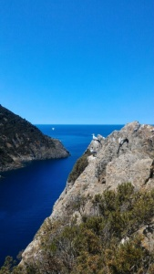 Gorgona Cala Maestra - intotheblue.it