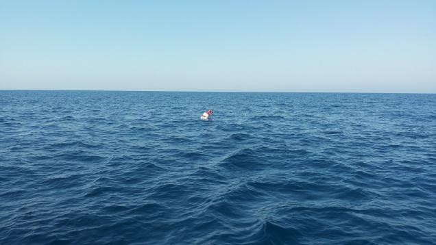 intotheblue.it mare pallone sub 20160827_103230